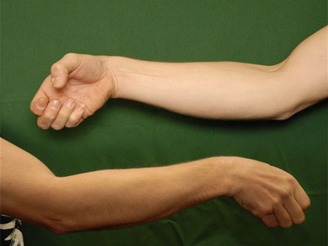 Picture of Eagle Claw Hand Technique Deu Sau